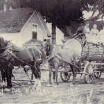 "Community Parks ""Tualatin Mill Company"" Origins"
