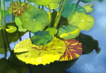 Lily Pad Reflecting, Dee Rommel